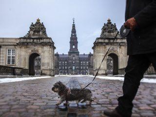 mennesker miljø Christiansborg folketinget demokrati
