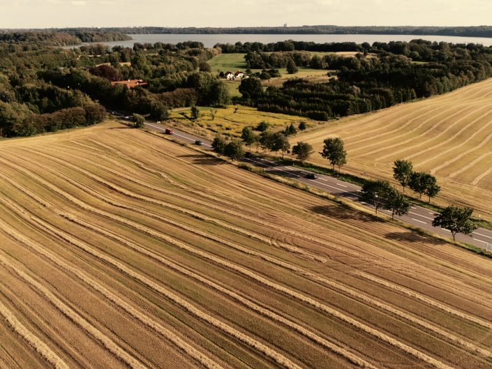 Høst drone